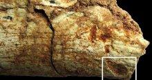 500 bin yıllık sır ortaya çıktı