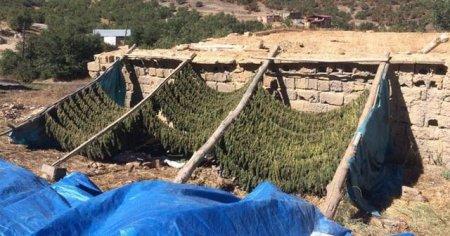 Lice kırsalında asker fark etti! 1 PKK'lı öldürüldü