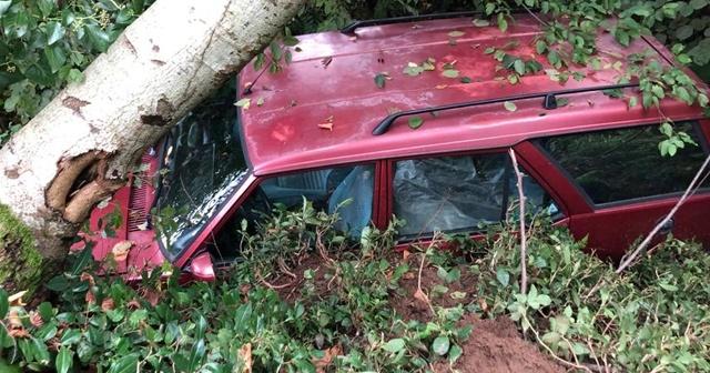 Rize'de şiddetli yağış, 2 araç toprak altında kaldı