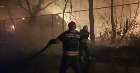 Ukrayna'da 146 noktada çıkan orman yangınlarında 11 kişi hayatını kaybetti